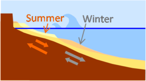Seasonal evolution of the beach profile